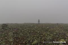 IMG_9238 (norwegen-fotografie.de) Tags: norw norwegen norway norge femunden femundsmarka villmark hedmark see wildnis wald landschaft