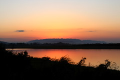 Orange evening (Hrishi the experimentor) Tags: kaziranga evening sunset national park wildlife canon capture assam northeast