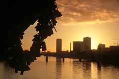 IMG_3485_2 (downatthezoo) Tags: frankfurt rivermain