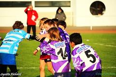 Brest Vs Plouzané (46) (richardcyrille) Tags: buc brest bretagne rugby sport finistére plabennec edr extérieur