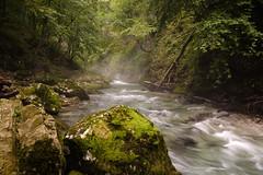 el canto del agua (ariquelme693) Tags: ro naturaleza agua eslovenia xt10 relax calma