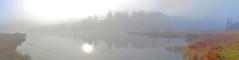 DSC_0180 Lac des Pontets (poncetdespontets) Tags: hautdoubs pnrhj tourbière