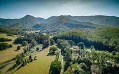 41 Buffer Creek Road, Bellingen NSW