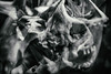 Ancestral 2 (pni) Tags: skeleton bone multiexposure multipleexposure tripleexposure museum thefinnishmuseumofnaturalhistory luonnontieteellinenkeskusmuseo naturhistoriskacentralmuseet luomus helsinki helsingfors finland suomi pekkanikrus skrubu pni museo