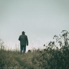 Afternoon walk (bratli) Tags: joe deacon afternoon walk november fall autumn blackmud ravine offleash edmonton