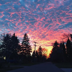 #AbstractSkies #Clouds #Horizon #Sunset #RedSkies #Dusk #PaintedSky #BeautifulView #BeautifulSunset #AmazingSunset #Nature #Winnipeg #NoFilter #Vignette #Iphonegraphy (johnzychua458) Tags: paintedsky beautifulview beautifulsunset nature abstractskies clouds horizon sunset redskies dusk amazingsunset winnipeg nofilter vignette iphonegraphy