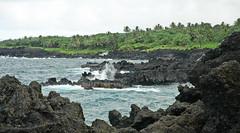 Volcanic Coastline and Rainforest, Hana Highway, Maui, Hawaii (trphotoguy) Tags: volcanic coastline hana hanahighway maui hawaii rainforest