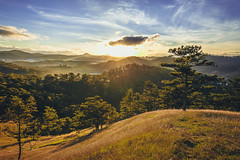 Have a warm morning! (trai_thang1211) Tags: tplt lmng vietnam vn hill hills valley grass sunrise dawn sun tree rays yellow mountain mountainside landscape sky field serene outdoor foothill sunset ridge