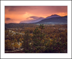 Autumn view (andreassofus) Tags: landscape landscapephotography naturelandscape naturephotography fallnature fall autumn color colorful trees sky sunset norway blsterdalen rondane rondanenationalpark view viewpoint september hike hiking outdoor travel travelphotography grandlandscape beautiful light naturallight sunlight clouds mountains foreground background