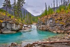 Marble Canyon (Daniel.Peter) Tags: bc canada flickr fluss kanada kootenay kootenaynationalpark marblecanyon nationalpark schlucht wasser canyon dpe3x river water britishcolumbia