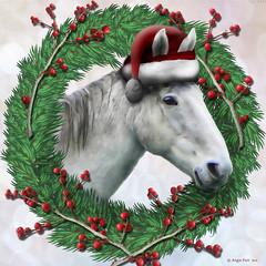 Santa's Horse! (rubyblossom.) Tags: horse sesonal christmas santa berries rubyblossom rubystreasures 2016 miichallenge 1 whitehorse