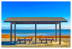 At the Shore (Timothy Valentine) Tags: ocean 1116 large bench 2016 monday plymouth massachusetts unitedstates us