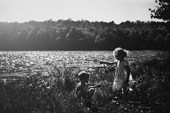 Bug Hunting (Kapuschinsky) Tags: blackandwhite monochrome bnw children child childhood candid lifestyle emotive moody naturallight rimlight outdoors outside lakeside water lake scenery grass childhoodunplugged simplicity sonyalpha sonya700 minolta pennsylvania thenumber8reservoir nepa nature forest explore discover