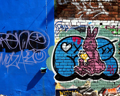 Spray Bunny (Mr Baggins) Tags: newtown graffiti streetart jozi johannesburg sonynex6 ladyaiko