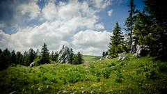 Felsen (W***) Tags: schweiz berge bern wald wandern felsen kantonbern jurahöhenweg nodsbe