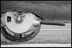 Wings of Freedom 2013 (SkyWildPhotography) Tags: b wild sky minnesota photography big aviation nine days 17 24 shawn fortress mn liberator blaine orton bombers witchita collings 2013 onine bomberweekend2013