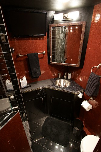 Moonlite - Stateroom Bathroom