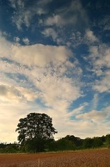 Coleshill farmland (Nano Second Artist) Tags: lens landscape nikon soft lee kit 1855mm filters grad d3100