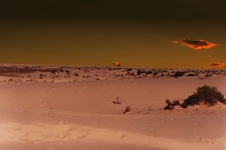 White Sands National Monument ~ New Mexico ~ Old Film 1983