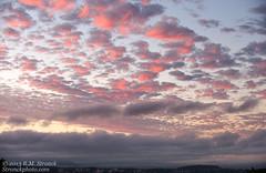 S.F. Bay Area from San Mateo (Bob Stronck) Tags: sunset sanfranciscobayarea laborday sanmateocounty stronckphotocom ©2013rmstronck