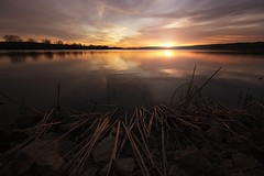 Mirror in the Lake (Brian Koprowski) Tags: sunset lake nature clouds forest reeds landscape mirror evening illinois weeds dusk awesome slough palos cookcounty chicagoland cookcountyforestpreserve briankoprowski bkoprowski fp2014cc