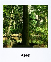 "#DailyPolaroid of 28-8-13 #343 • <a style=""font-size:0.8em;"" href=""http://www.flickr.com/photos/47939785@N05/9699846736/"" target=""_blank"">View on Flickr</a>"