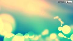 HD Wallpaper (Infoway LLC - Website Development Company) Tags: wallpaper beautiful wonderful nice superb awesome images exotic hd illustrator wintersnow incredible breathtaking classy mindblowing hdwallpaper lifeunderthesea fishwallpaper softwaredevelopmentcompany ecommercewebdevelopment thegoldenocean undertheseahdwallpaper picturescoralsfishunderwater sealionswallpaper undertheseaparadise