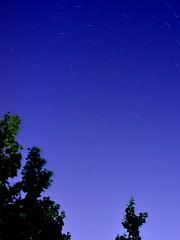 Northern Star - Star Trail from my Window (Mashhour Halawani) Tags: longexposure sky tree night digital 35mm star cool nikon raw random outdoor amman jordan clear trail astrophotography northern northstar d5100 weatherporject