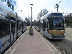 Trams at Esplanade terminus (Sean_Marshall) Tags: brussels belgium belgique belgië bruxelles tram transit streetcar brussel bombardier stib mivb flexity