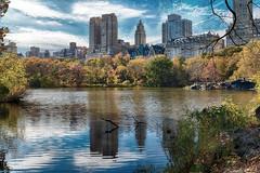 Central Park Lake (Joe Josephs: 2,600,180 views - thank you) Tags: autumn newyork fall landscape centralpark fallfoliage landscapephotography urbanparks nikon2485 nikond800e copyrightjoejosephsphotography copyrightjoejosephs2013