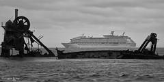 the old and the new (TLP images) Tags: blackandwhite mono cruiseship shipwrecks wrecks tangalooma voyageroftheseas timlashbrookphotography tangaloomaislandresort facebookcomimagestlp imagestlp
