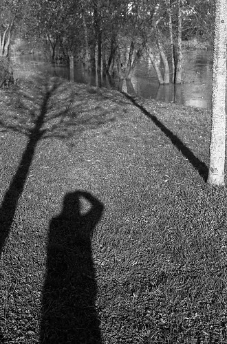 Winter shadow