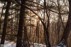 Hawks Nest State Park (mkmphoto64) Tags: winter westvirginia newrivergorge gauleybridge hawksneststatepark