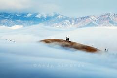 Transitions (Simonds) Tags: trees cloud mountains tree fog pine clouds island washington butte north explore cascades chelan