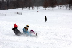 Prospect Park (Brooklyn Hilary) Tags: nyc newyorkcity winter snow cold brooklyn prospectpark snowing blizzard blustery