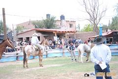 DSC_0426 (AgendaGauchaJujuy) Tags: argentina caballos palenque jinete gauchos jaramillo jujuy tilcara gaucho jineteada tropilla cachullani chucarodeldurazno quebaradehumahuaca