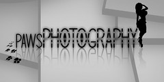 {PawsPhotography} Logo (Mrs. Knightly) Tags: logo sl paws pawsphotography