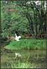 6577 R Albania Pamje nga Driloni Pogradec Driloni National Park View of Driloni Pogradeci  ARBA Editions (Morton1905) Tags: 6577 r albania pamje nga driloni pogradec national park view pogradeci arba editions