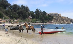 Horcon Chile (d1pinklady) Tags: chile sunset beach del mar fishing resort area coastline vina renaca horcon