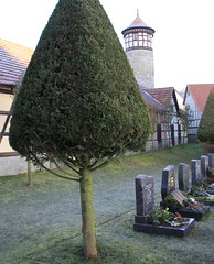 Graves, store-rooms and tower of the fortified-church site (:Linda:) Tags: tree tower germany keller village thuringia gravestone halftimbered gade vachdorf fortifiedchurch outsidestoreroom