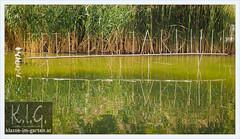 fete de jardins, parc Bercy, Paris (Brigitte Rieser) Tags: park paris france garden pond letters jardin bercy teich schrift parc garten landart upcycling fetedejardins