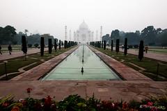 Taj Morning 7821 (Ursula in Aus) Tags: india architecture taj tajmahal agra unesco uttarpradesh earthasia