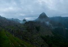 Machu Picchu (faltimiras) Tags: peru machu picchu inca totora ruins cusco inka pichu ruinas andes nevado inkas perou salkantay humantay nevat maizal yanama chacora colpapampa inques