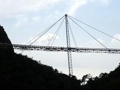 Le pont suspendu sur la Canopée