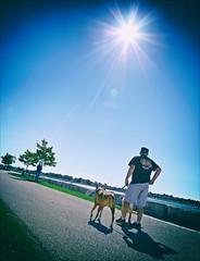 Slider Sunday (Sue90ca Glorious Autumn) Tags: canon 6d slidersunday hss man dog sun