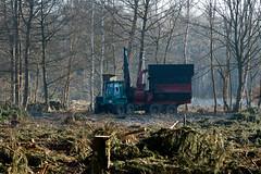 ckuchem-7177 (christine_kuchem) Tags: wald abholzung baum baumstmme bume einschlag fichten holzeinschlag holzwirtschaft waldwirtschaft