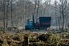 ckuchem-7177 (christine_kuchem) Tags: wald abholzung baum baumstämme bäume einschlag fichten holzeinschlag holzwirtschaft waldwirtschaft