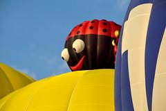 Montgolfiade Warstein (Germany) (jens_helmecke) Tags: balloon ballon montgolfiade warstein sauerland nikon jens helmecke deutschland germany