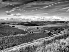 Piethorne Valley Reservoir (Missy Jussy) Tags: rochdale landscape lancashire england piethorne valley reservoir sky clouds water fields walkinglandscape fence field views monochrome mono blackwhite blackandwhite canon canonpowershotsx60 denshaw