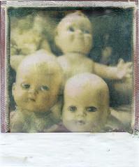 the dolls (bunchadogs & susan) Tags: dolls fortunacalifornia playingwithpolaroid